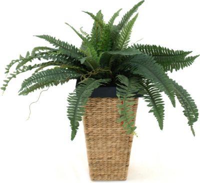 Kunstpflanze Farn, grün | Dekoration > Dekopflanzen | Sonstiges