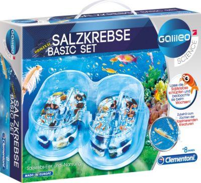 clementoni-galileo-salzkrebse-basis-set