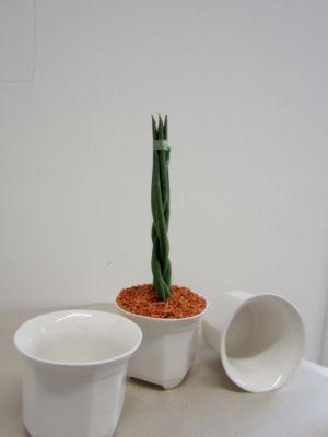 bert pfe keramik preisvergleich die besten angebote online kaufen. Black Bedroom Furniture Sets. Home Design Ideas