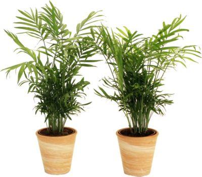 Genial Bodenschutzmatten Für Home & Office Umweltfreundlich Und 100% Recyclebar Bodenschutzmatten