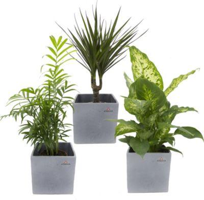 Büro & Schreibwaren Genial Bodenschutzmatten Für Home & Office Umweltfreundlich Und 100% Recyclebar