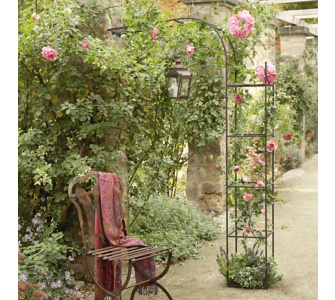 halber rosenbogen sonstige preisvergleiche. Black Bedroom Furniture Sets. Home Design Ideas