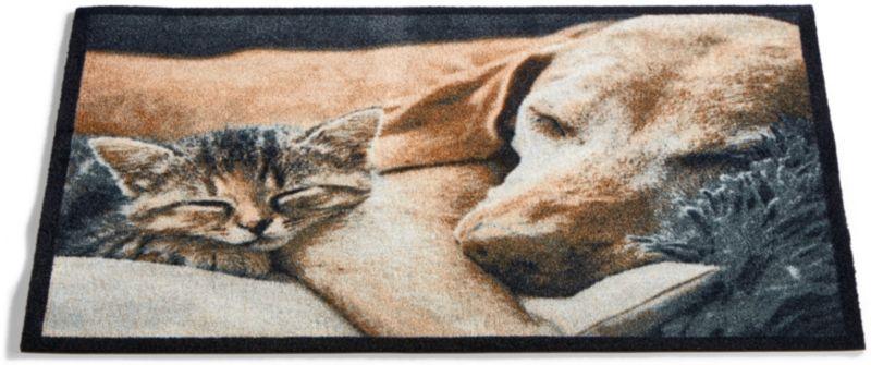 Schmutzfangmatte mit Motiv - Hund & Katze