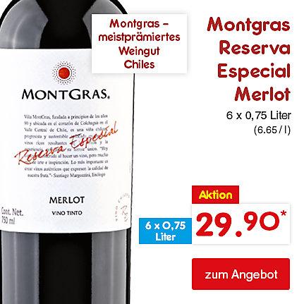 Montgras Reserva Especial Merlot, 6 x 0,75 Liter (6.65 / l), für nur 29.90 €*