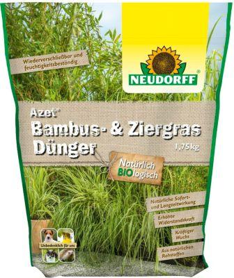 Bambus Ausgraben Was Beachten Garten Gartenforumde