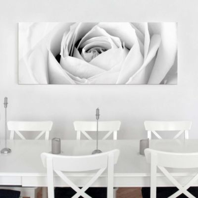 Glasbild - Close Up Rose - Panorama... 40cm x 100cm