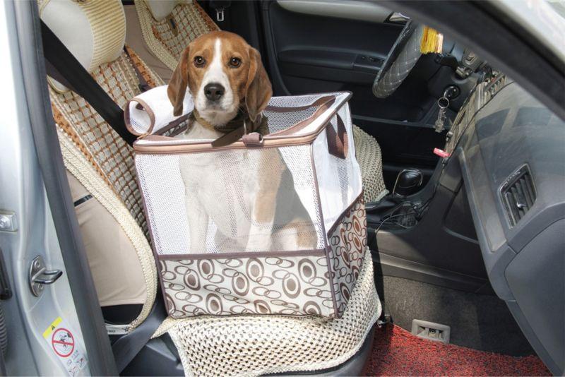 HTI-Line Transporttasche für Kleintiere Teddy