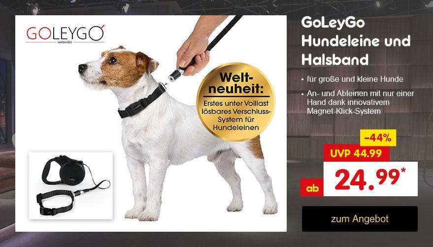 """Bekannt aus """"Die Höhle der Löwen"""": GoLeyGo Hundeleine und Halsband, ab nur 24.99 €* direkt hier im Netto Online-Shop kaufen."""