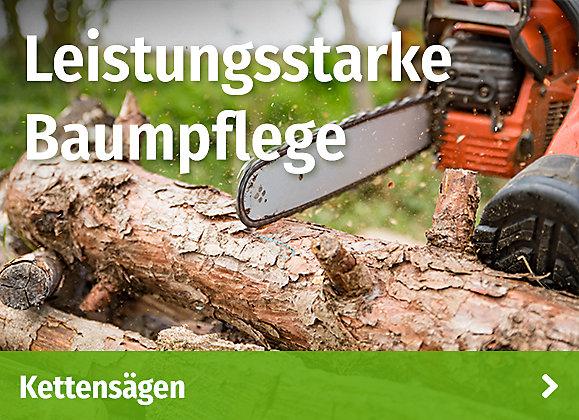 Leistungsstarke Baumpflege - Kettensägen