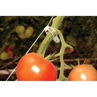 Rion Tomaten-Rank-Kit, 6 Stk.
