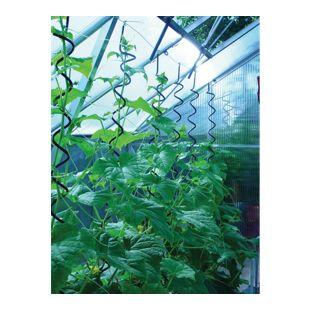 Juliana Pflanzenspirale für Gewächshäuser - 3 Stück