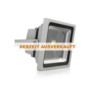 XQ-Lite XQ1225 LED-Fluter