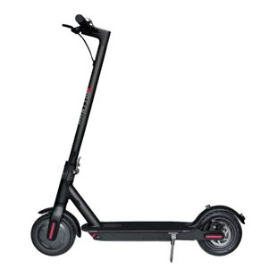 Trotty 6600 klappbarer e-Scooter mit 250 Watt