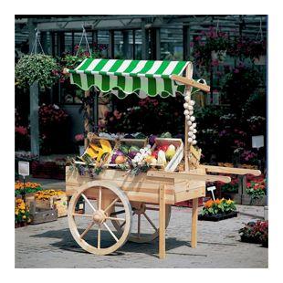 Promadino Marktwagen mit Baldachin weiß/grün