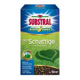 Substral Rasensamen Der Schattige - 1 kg