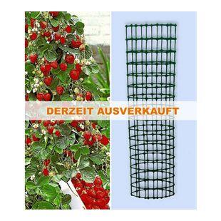 Kletter-Erdbeere 'Hummi®' und Dekorativer Rankturm;1 Set