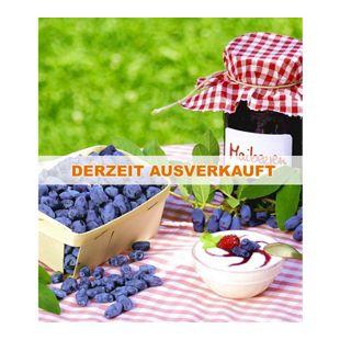 Maibeeren® 'Maitop® & Amur®', 2 Pflanzen, Lonicera kamtschatica Beerenobst  Honigbeere Sibirische Blaubeere