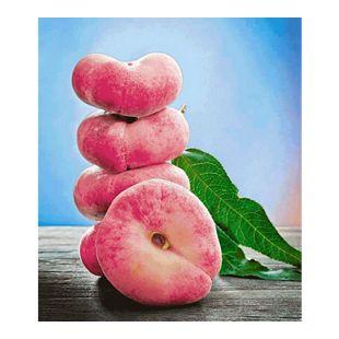 Teller-Pfirsich 'PlatiforTWO®', Pfirsichbaum 1 Pflanze, Prunus persica