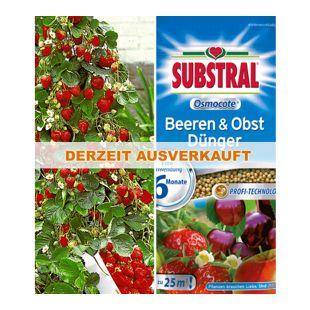 Kletter-Erdbeere® 'Hummi®' & SUBSTRAL® 'Beeren & Obst' Düngeperls,1 Set