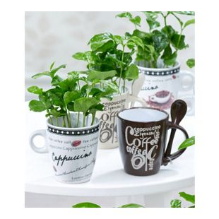 Coffea Arabica mit Kaffeetasse,3 Sets