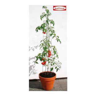 Tomatenturm 120 cm,1 Stück