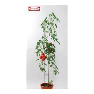 Tomatensäule 120 cm, 1 Stück