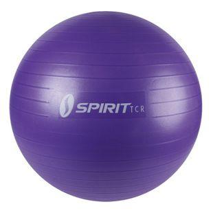Spirit Gymnastikball Ø 65 Sitzball Fitnessball Yogaball Bürostuhl Ball + Pumpe