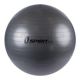 Spirit Gymnastikball Ø 75 Sitzball Fitnessball Yogaball Bürostuhl Ball + Pumpe