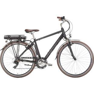 28 Zoll Elektro Herren Fahrrad Montana E-Bluecity... schwarz, 49 cm