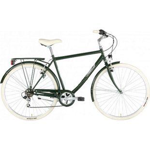 28 Zoll Herren Trekking Fahrrad Alpina Sharin... grün