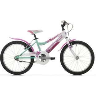 20 Zoll Mädchen Fahrrad Cinzia Ariel... grün-weiß
