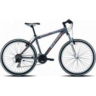 26 Zoll Mountainbike Legnano Val di Fassa 21... 38 cm, matt-dunkelgrau-rot