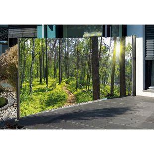 HTI-Living Seitenmarkise mit Fotodruck Wald