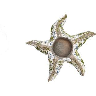 HTI-Line Pflanzgefäß Mosaik Seestern