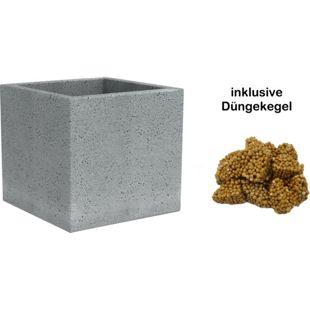 Scheurich C-Cube 29x29x27 cm, stony grey, inklusive 4 Düngekegel