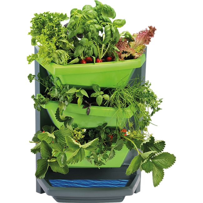 Juwel Vertical-Garden Grundelement limette - Bild 1