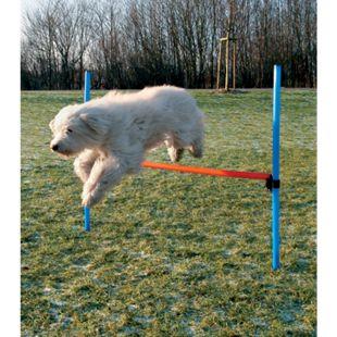 Dog - Agility - Hürde - Bild 1