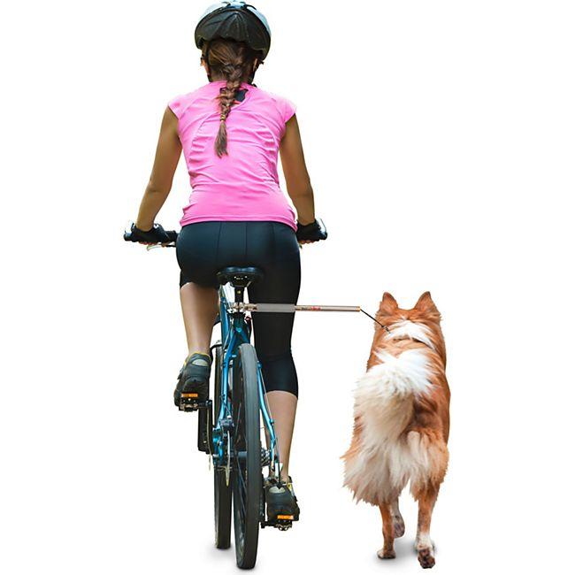 Dobar Walky Dog Plus Fahrradleine - Bild 1