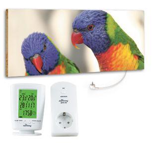 """Marmony 800W Infrarot-Heizung Motiv """"Birds"""" mit Thermostat MTC-40 - Bild 1"""