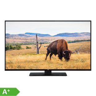 JVC LT-40V55LFA 102cm (40 Zoll) LED TV - Bild 1