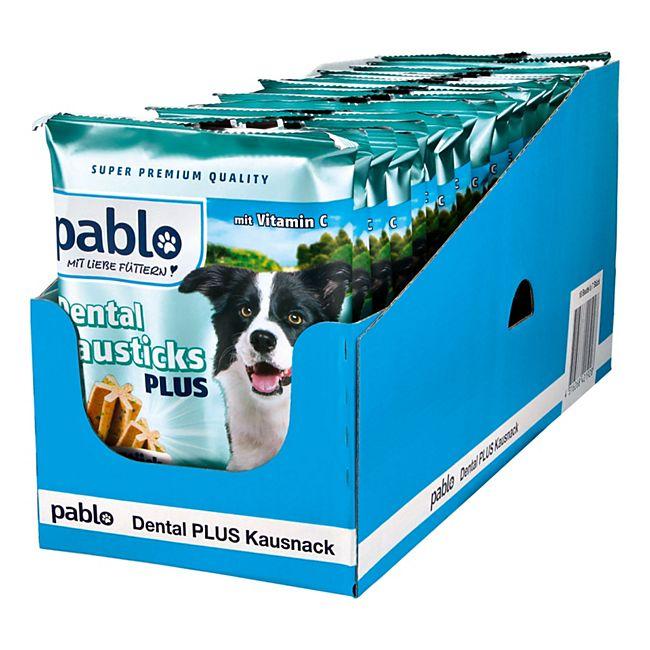Pablo Dental Kausticks 210 g, 18er Pack - Bild 1