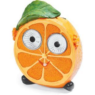 Freche Solar-Früchte - Orange Conny - Bild 1