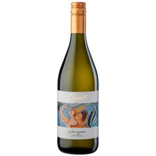 Dipinti Sauvignon Trevenezie IGT 12,5 % vol 0,75 Liter - Bild 1