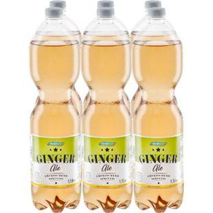 Stardrink Ginger Ale 1,5 Liter, 6er Pack - Bild 1