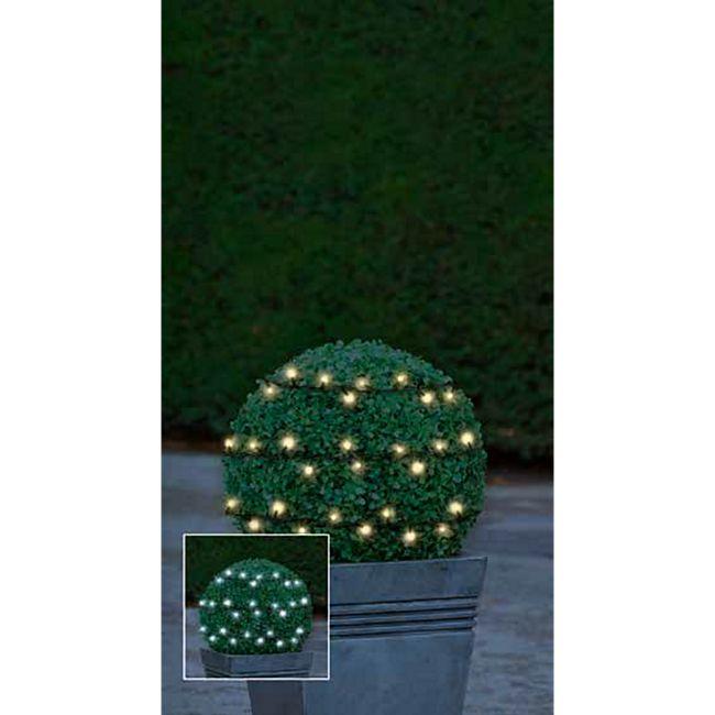 LED Lichterkette ww/kw Wechsel - Bild 1