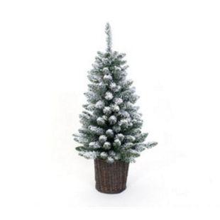 Evergreen Weihnachtsbaum Kiefer Frost 90 cm - Bild 1