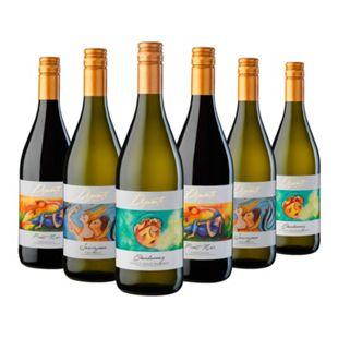 DIPINTI Weinpaket 6 Flaschen 12,5 % vol je 0,75 Liter - Bild 1