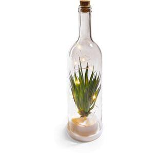Botanische Flaschen - Aloe Vera - Bild 1