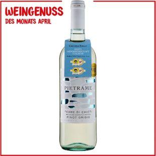 Pietrame Pinot Grigio 12,5 % vol 0,75 Liter - Bild 1
