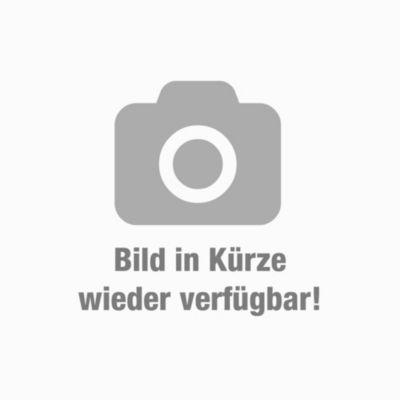 in wei/ß CARO-M/öbel Schuhschrank LENNIS Schuhregal Schuhkommode mit 2 T/üren und inklusive 4 Einlegeb/öden